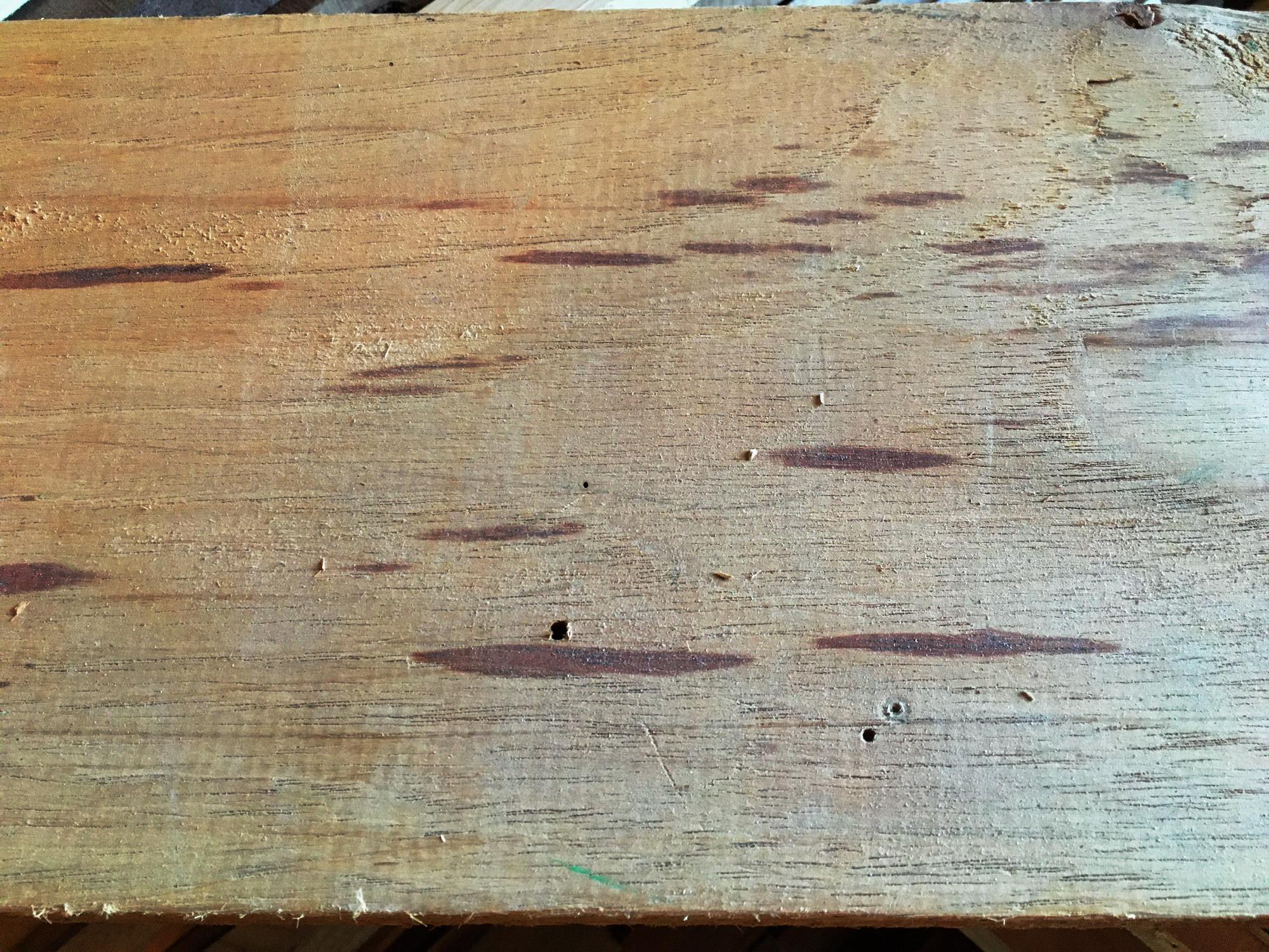 Mystery wood-003-mystery-wood-face-grain.jpg
