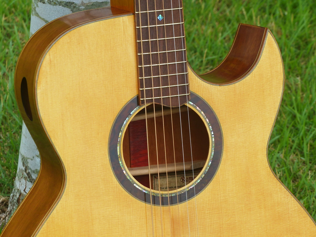 1st acoustic guitar build-027-build-1-rosette.jpg