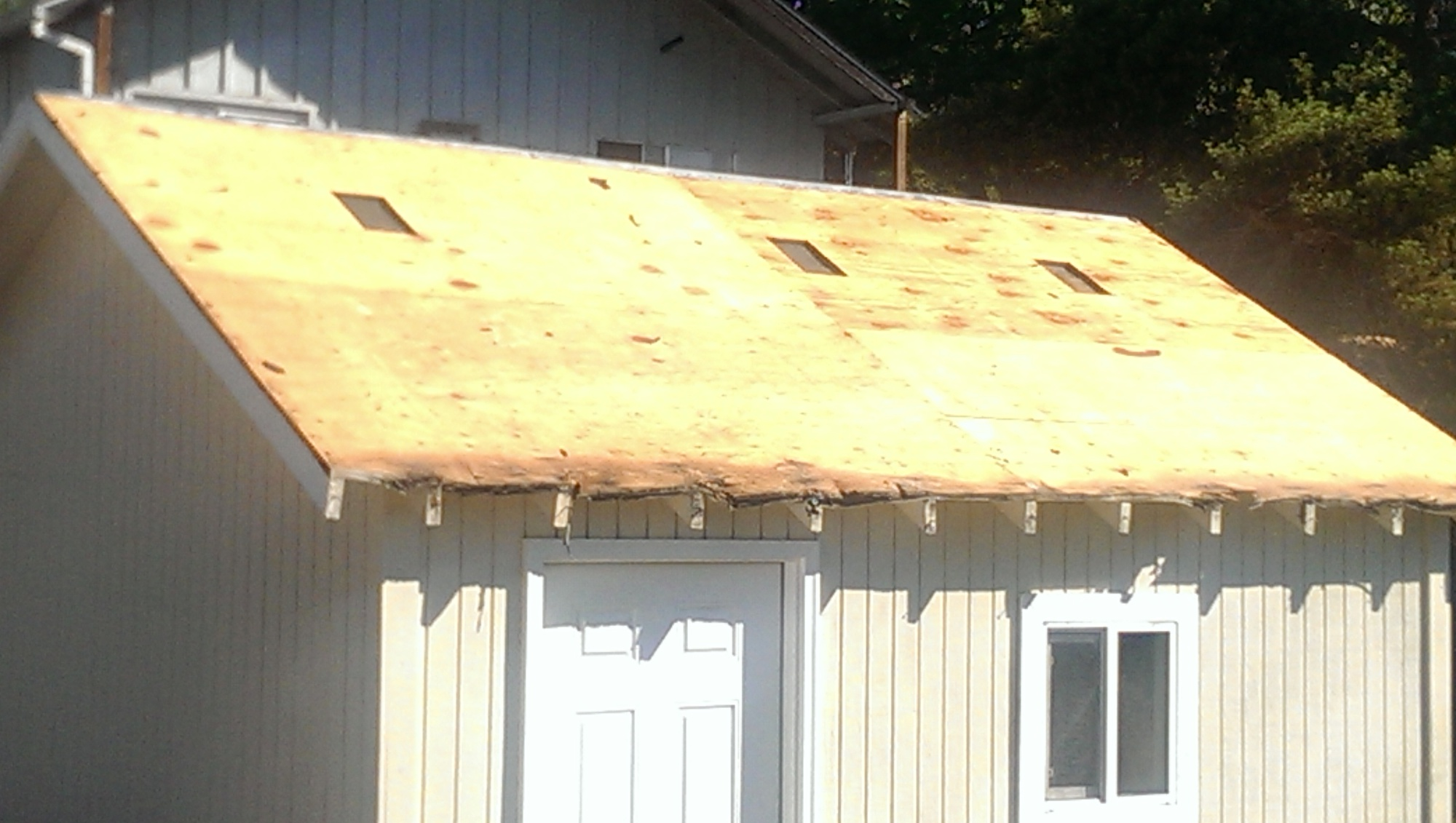 First time doing steel roof-imag0590.jpg