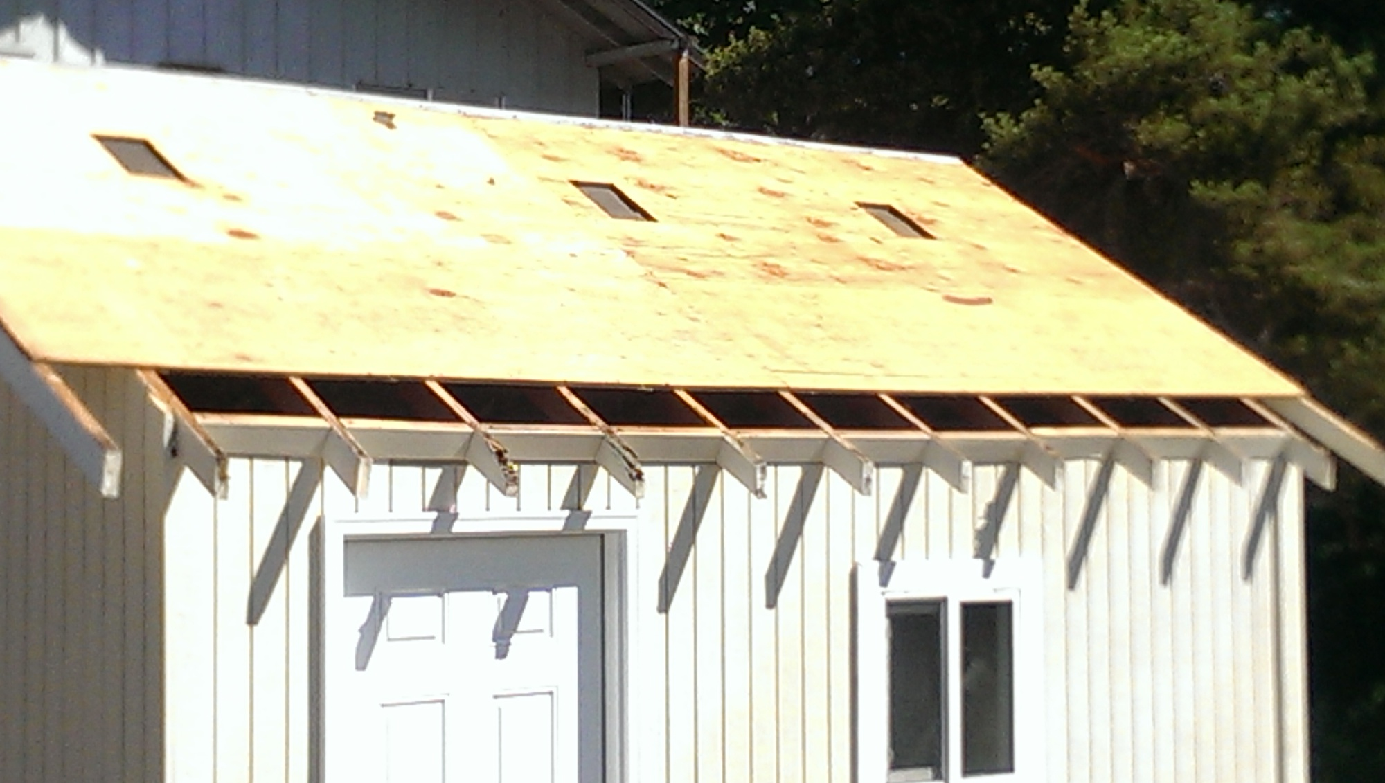 First time doing steel roof-imag0591.jpg