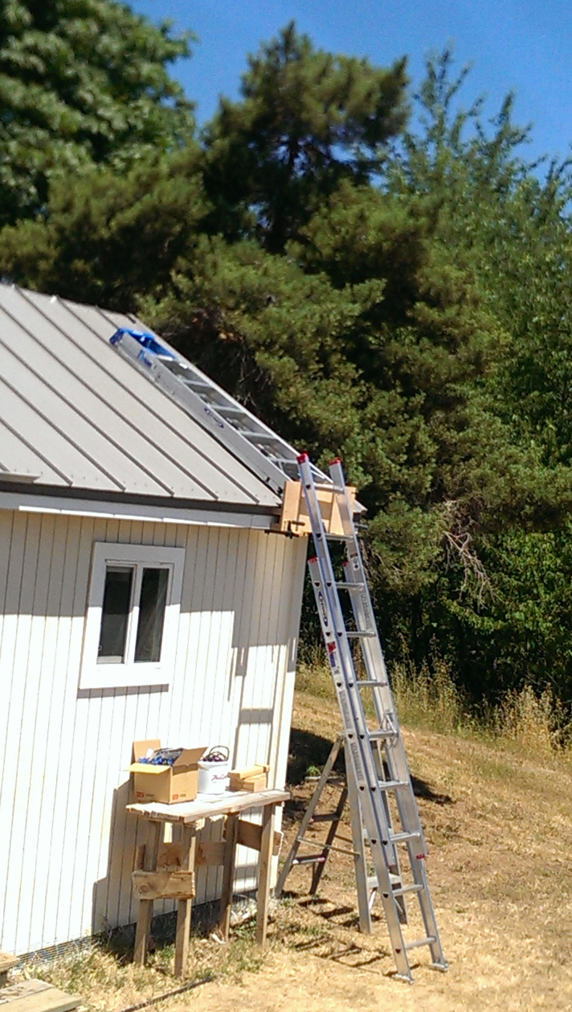 First time doing steel roof-imag0611.jpg