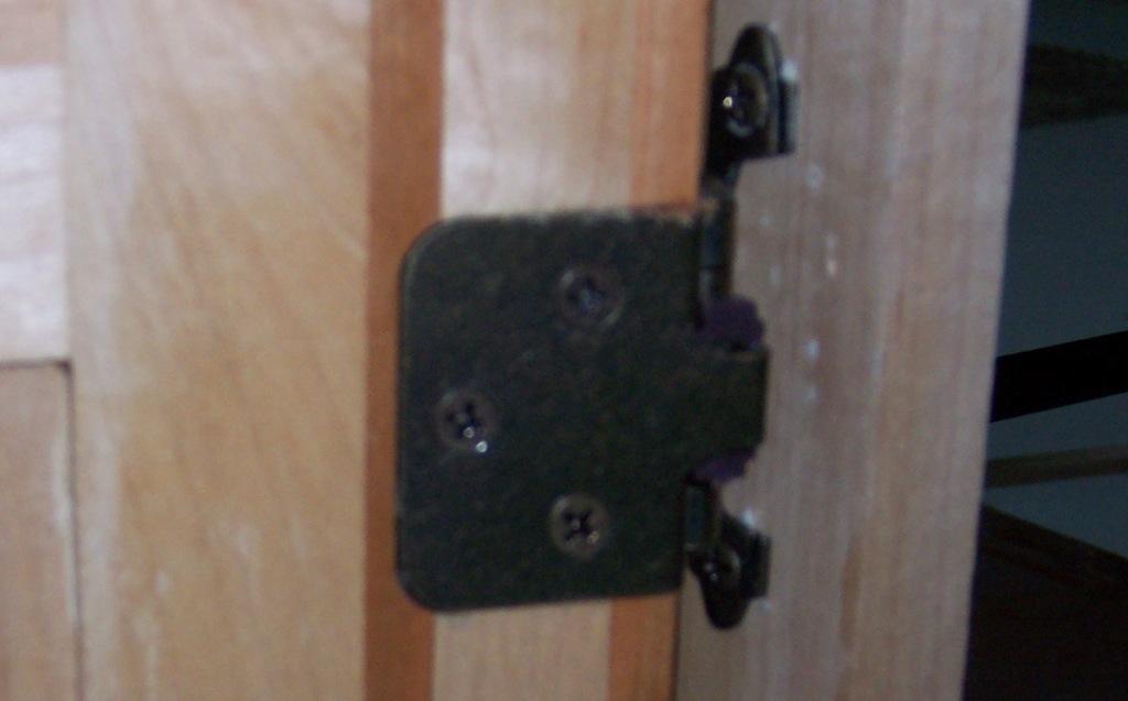 Few more raised panels doors & a drawer-wb-cb-dr-hing.jpg