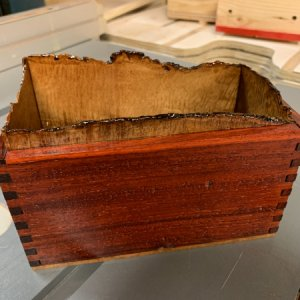 Buying a box with live edge Curly Maple lining...